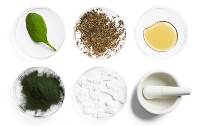 INGREDIENTS GLOSSARY