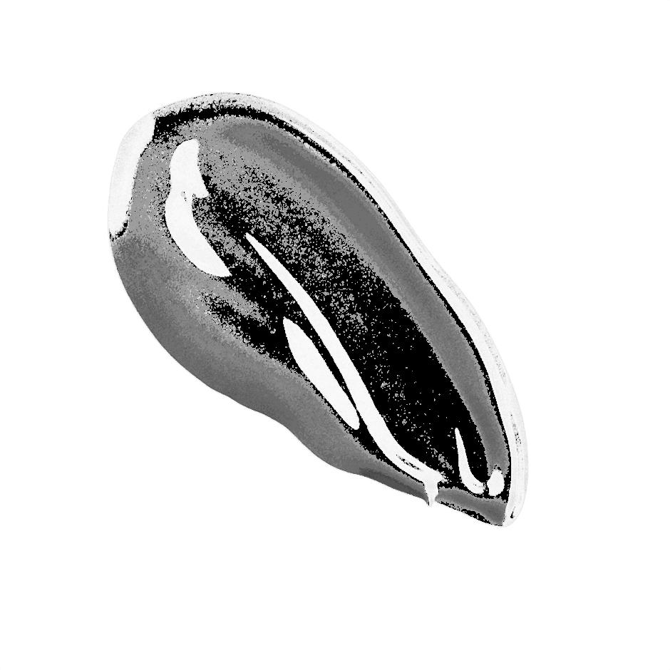 Vanish Seamless Finish Liquid Foundation, Light Beige, texture